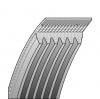 Belt SL 50
